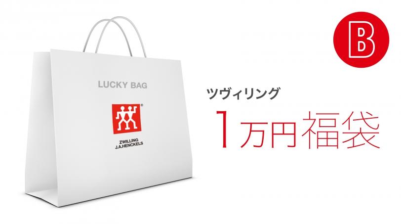 ラッキーバッグ ツヴィリング 11,000円B |  | ツヴィリング 0